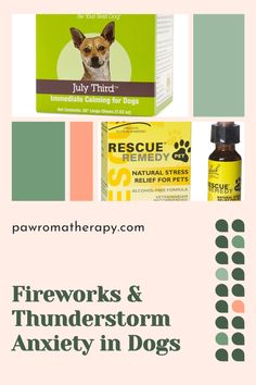 Natural Ways to Treat Fireworks and Thunderstorm Anxiety in Dogs #anxietyindogs #thunderstormanxietyindogs #dogsfireworks #fireworksanxietyindogs #rescueremedyforpets Dogs And Fireworks, Dog Anxiety, Healthy Pets, Cat People, Diy Stuffed Animals, Thunderstorms, Pet Beds, Dog Accessories, Dog Photos