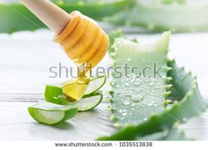 Stock Photo: Aloe Vera and honey closeup. Sliced Aloevera with dripping honey natural organic cosmetic ingredients for sensitive skin, alternative medicine. Organic Skin care concept. On white wooden background