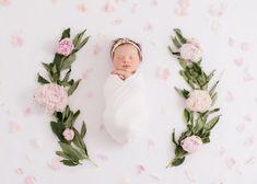 Tampa Newborn Photography Portfolio - Kelly Kristine Photography