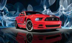 Ford Mustang Boss 302 (© James Lipman)