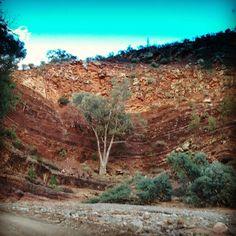 Flinders Ranges South Australian Outback
