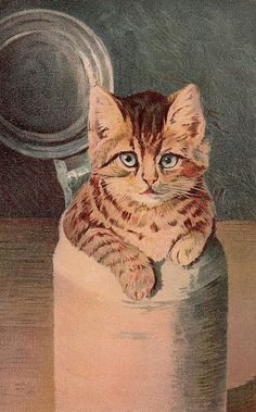 Cat in Jug Vintage Victorian Postcard
