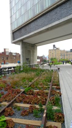 The High Line, a park in New York city, built on old elevated railway tracks.