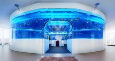 O Aquário de R$ 4,9 milhões - AquaA3 - Aquarismo Alagoano