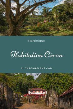 L'Habitation Céron est située au Prêcheur, au Nord de la Martinique. Il est entouré d'une très jolie forêt que l'on peut visiter en famille. Surtout, on peut y voir un arbre remarquable de plus de 3 siècles, le zamana, qui s'est vu décerné en 2016 le Prix Public de l'Arbre de l'Arbre de l'année.