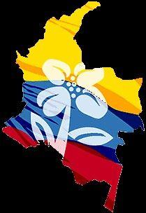 Ecuador, Android, David, Tattoo, Fictional Characters, Ideas, Brazil, World, Colombian Flag