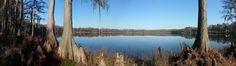 80 acre Honey Lake on a beautifully calm & peaceful morning :)