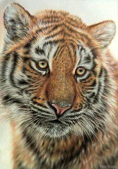 Liska by pamslaats.deviantart.com on @deviantART #tiger #tigerart #wildlifeart #BigCatFamily