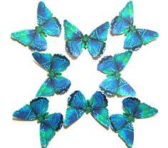 24  Stem Cell Blue, Green & Black Butterflies for DIY weddings, butterfly baby showers, butterfly school kits, wall décor, stocking stuffers