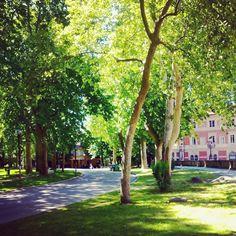 I vialetti alberati, Parco della Montagnola Bologna