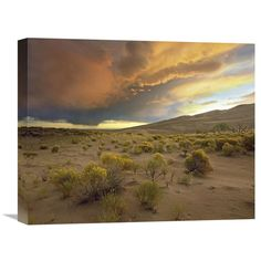Global Gallery Storm Clouds Over Great Sand Dunes National Monument Colorado Wall Art - GCS-396601-1620-142