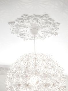I have this light now I need the ceiling medallion