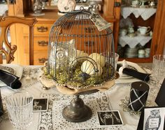 bird cage decor#Repin By:Pinterest++ for iPad#