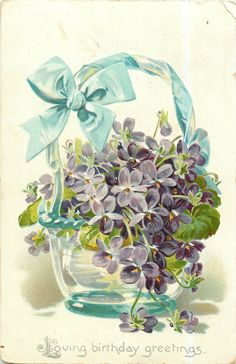 violets, in clear vase with overhead handle, blue ribbon and bow on handle, two violets on table