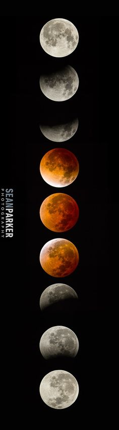 """Blood Moon Phases: Photographer Sean Parker of Tucson, Ariz., created this mosaic of the total lunar eclipse phases on April 15, 2014 using images taken with a through a 12"""" LX Meade 200 telescope with a Canon 6D camera via Space.com"""