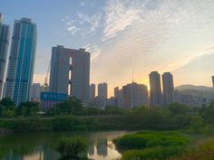 Seattle Skyline, New York Skyline, Busan, River, Outdoor, Outdoors, Outdoor Games, The Great Outdoors, Rivers