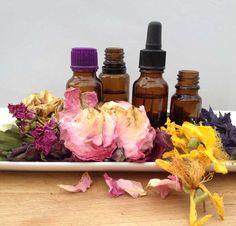 Jak uchovat bylinky pro zimu a získat luxusní kosmetický olej?