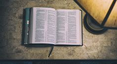 What Do the Experts Say? | Our Daily Bread