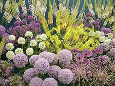 Alium -- like an undersea backyard!