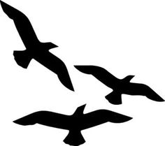 gull in flight silhouette - Google Search