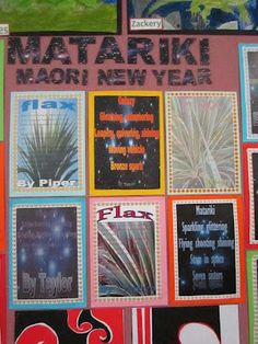 Melulater: Matariki - an overview of a unit of work