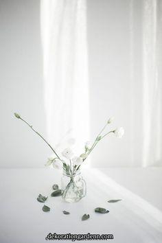 모나플로스의 아침   모나플로스의 아침 Minimal Photography, Still Life Photography, Light Photography, Aesthetic Iphone Wallpaper, Aesthetic Wallpapers, Flower Phone Wallpaper, Minimalist Wallpaper, White Iphone, White Wallpaper