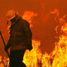 2011 Wildfire - Bastrop, Texas