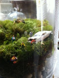 mobster terrarium