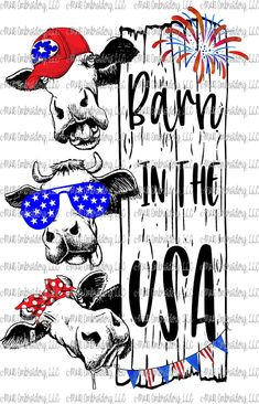 Sublimation Transfer (only) - 3 cows - barn in the USA - patriotic - heifers- heffa - t-shirt - can cooler Cow Pictures, Meme Pictures, Cow Art, Silhouette Cameo Projects, Vinyl Crafts, Fourth Of July, Cricut Design, Funny, Prints