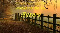 High Pictures, Aurora, Piano, Musicals, Vineyard, Places To Go, Relax, Country Roads, Heartstrings