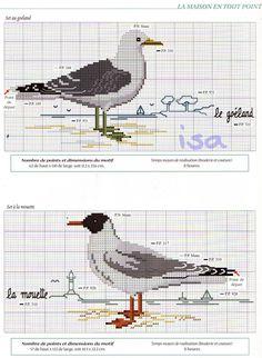sea birds placemats