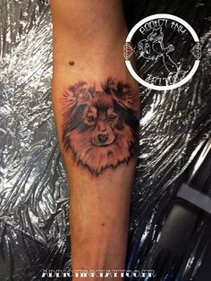 Sheltie tattoo