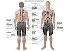 Neurolymphatic chart. For more information, please visit www.catherinecarrigan.com