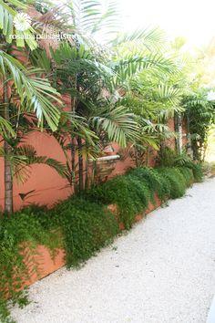 Rosalba Paisagismo Landscape Architecure