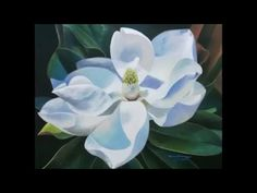 Step by step how to paint a magnolia flower in realistic - YouTube Magnolia Tattoo, Green Paintings, Magnolia Flower, Color Tattoo, Painting Techniques, Flower Art, Projects To Try, Oil, Watercolor