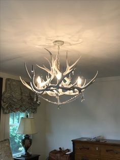 74 best antler chandeliers images in 2019 antler chandelierantler chandelier, chandeliers, antlers, transitional chandeliers, horns, chandelier, candelabra,
