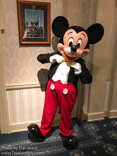 Mickey Mouse Pictures, Disney World Pictures, Disney Parks, Walt Disney World, Walter Elias Disney, Daisy Duck, Tokyo Disneyland, Mickey And Friends, Disney Mickey Mouse