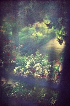 View from Monet's studio in Giverny - Bernard Plossu Dark Photography, Street Photography, Travel Photography, Claude Monet, Monet Giverny, Exposition Photo, French Photographers, Expositions, What Is Tumblr