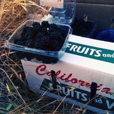 Blackberry Strawberry Jam