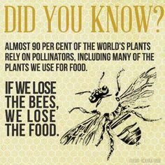 Lose bees lose food