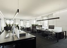 Hoyne Office in Melbourne by Elenberg Fraser