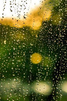 Free stock photo of water, rain, raindrops, window
