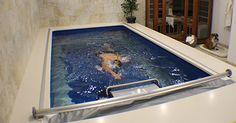 Piscina sin fin   Piscina contracorriente   Piscinas interiors   Nadar