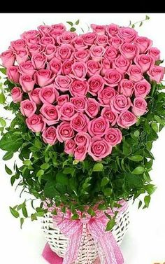 Beautiful Flowers Wallpapers, Beautiful Flowers Garden, Exotic Flowers, Amazing Flowers, Love Flowers, Beautiful Roses, Happy Birthday Flowers Wishes, Happy Birthday Pictures, Happy Birthday Messages