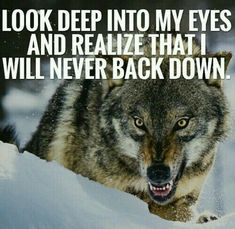 I never back down. I don't expect you to either.
