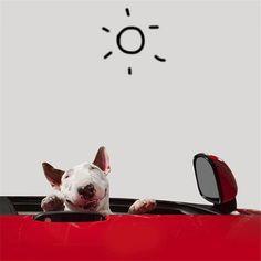 治癒離婚創傷的插畫攝影: 男人與狗的逗趣日常 18