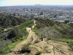 Runyon Canyon Park- a beautiful hiking spot in Hollywood!  dog friendly and amazing views