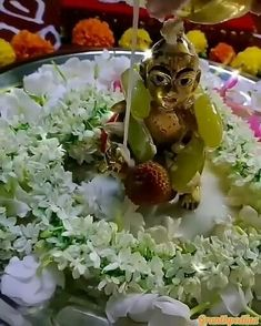 Krishna Gif, Radha Krishna Songs, Krishna Flute, Baby Krishna, Jai Shree Krishna, Radha Krishna Images, Cute Krishna, Lord Krishna Images, Shree Krishna Wallpapers