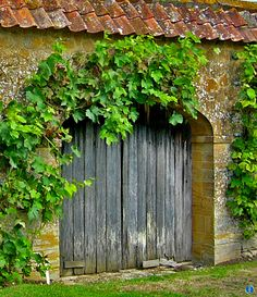 """"""" THERE ARE SO MANY DOORS TO BE OPENED, and I'm not afraid to look behind them."""" ― Elizabeth Taylor  ......................* a lovely garden gate @ Barrington Court, Somerset, England. A fruit orchard and herb garden behind the gate."""