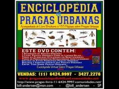 Adquirir Livro Pragas Urbanas: 11-96424.9997 Bill Andersen – Pragas Urbanas Como…